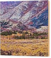 Fall Colours In Ogilvie Mountains Wood Print