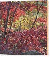 Fall Comes To New England Wood Print
