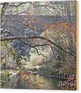 Fall Delight 3 Wood Print