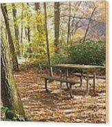 Fall Delight 4 Wood Print