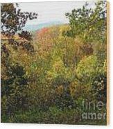 Fall Delight 7 Wood Print