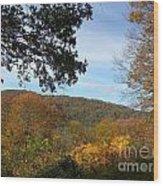Fall Delight 9 Wood Print