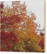 Fall Filled Sky Wood Print