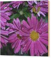 Fall Flowers In Bloom Wood Print