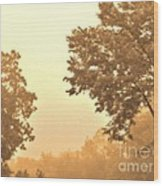 Fall Foggy Morning Wood Print by Marsha Heiken