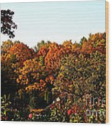 Fall Foliage And Roses Wood Print
