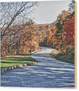 Fall Foliage On The Blue Ridge Parkway Wood Print