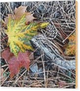 Fall Forest Floor Wood Print