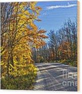 Fall Forest Road Wood Print by Elena Elisseeva
