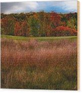 Fall Golf Wood Print