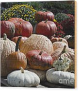 Fall Harvest Colorful Gourds 7965 Wood Print