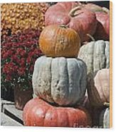 Fall Harvest Colorful Gourds 7968 Wood Print