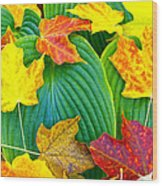 Fall Hosta Wood Print