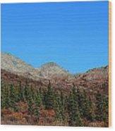 Fall In Denali Wood Print