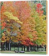Fall In Michigan Wood Print by Optical Playground By MP Ray