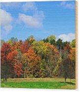 Fall In North Carolina Wood Print