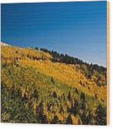 fall in Ruidoso Wood Print