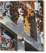 Fall In The City 3 Wood Print