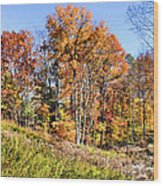 Fall In The Foothills Wood Print