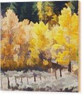 Fall In The Sierra Wood Print