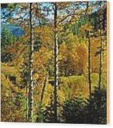 Fall In The Sierras Wood Print by Helen Carson