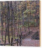 Fall In Yellowsprings Wood Print