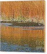 Fall In Yellowstone National Park Wood Print