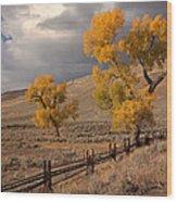 Fall In Yellowstone Wood Print
