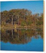 Fall Lake 4 Wood Print