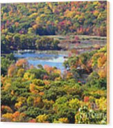 Fall Lake Wood Print