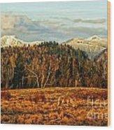 Fall Landscape-hdr Wood Print