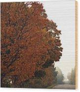Fall Laneway Wood Print