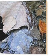 Fall Leaf Abstract Wood Print