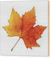 Fall Leaf Wood Print