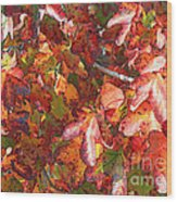 Fall Leaves - Digital Art Wood Print