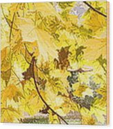 Fall Leaves Abstract Wood Print