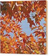 Fall Leaves Art Prints Autumn Red Orange Leaves Blue Sky Wood Print