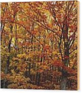 Fall Leaves On Trees Wood Print