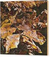 Fall Leaves Part Five Wood Print