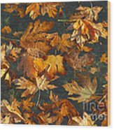Fall Maple Leaves On Water Wood Print