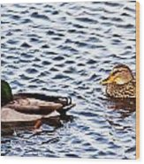 Fall Millards Swiming Wood Print