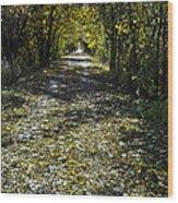 Fall On Macomb Orchard Trail Wood Print