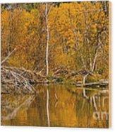 Fall On Taylor Creek Wood Print