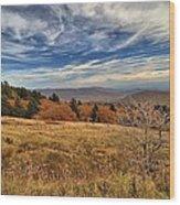 Fall On Whitetop Mountain Wood Print