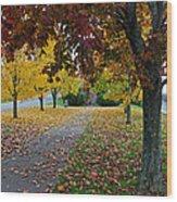 Fall Park Wood Print