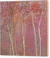 Fall Pastels Wood Print