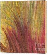 Fall Prairie Grass By Jrr Wood Print by First Star Art