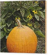 Fall Pumpkin Wood Print