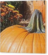 Fall Pumpkin Wood Print by Kimberly Perry