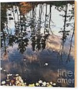 Fall Reflection Of Pines Wood Print
